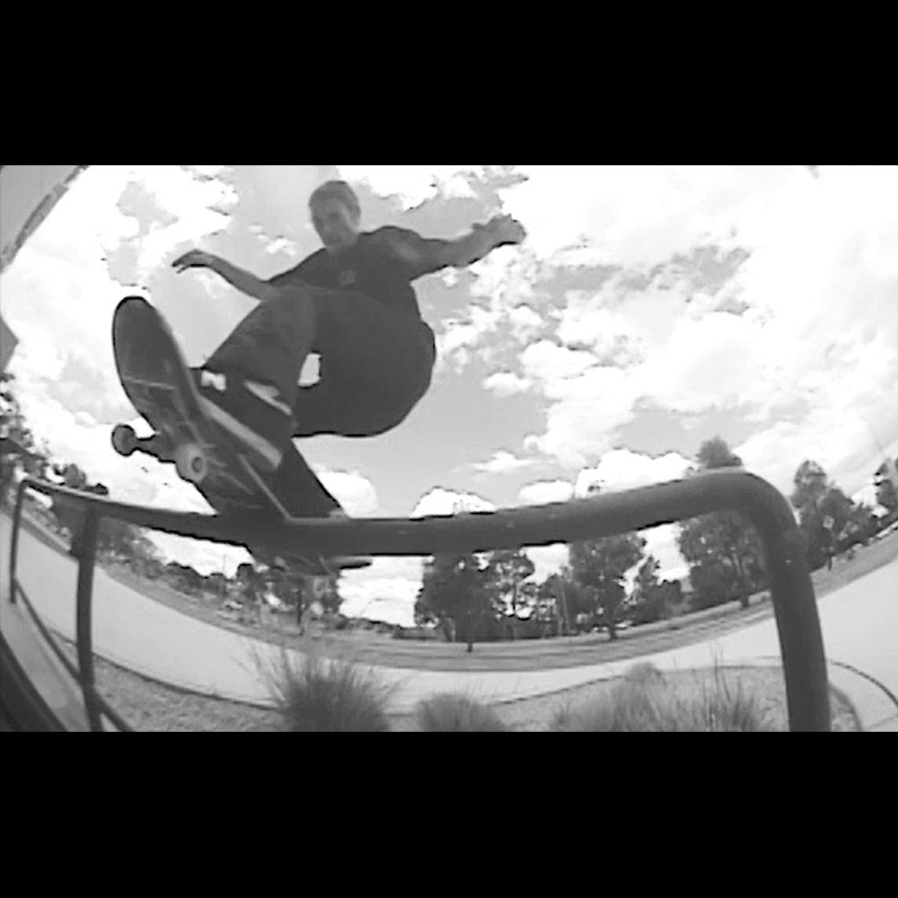 DICKIES (ディッキーズ) : GRAYSCALE VIDEO