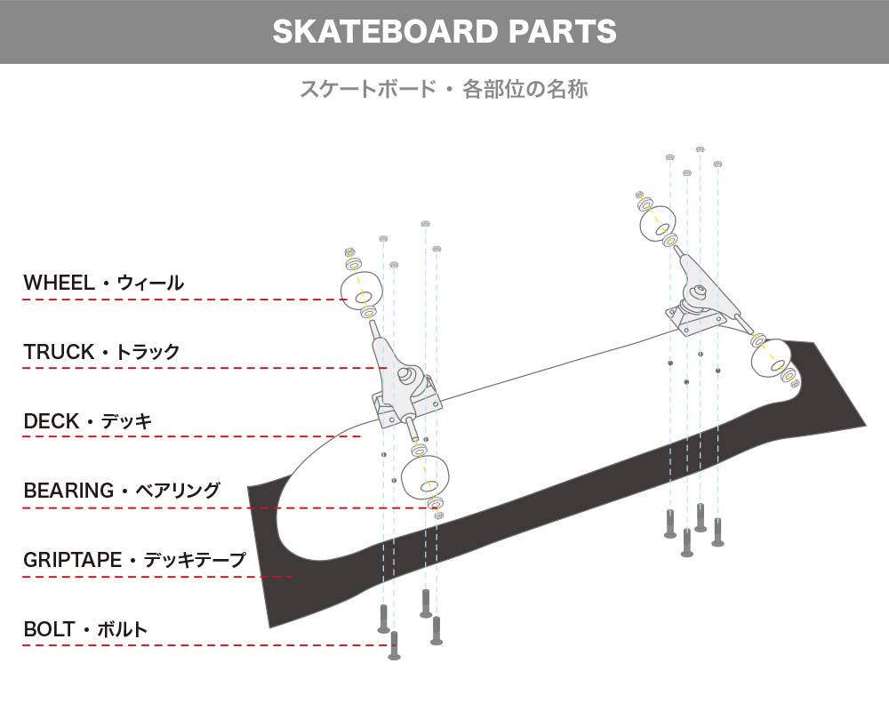 【スケートボードのパーツ名称】